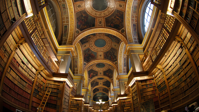 Bibliothèque - le plafond